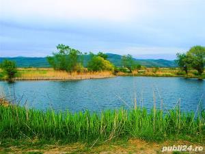 Teren la balta Balata și râul Mureș (variante schimb cu autoturism) de vânzare  - imagine 1