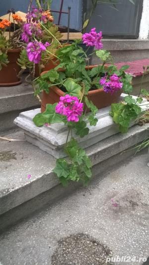 Sacsii pentru flori (Ghivece din mozaic) - Manufactura! - imagine 3