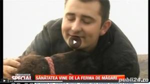 Ferma Magaritelor - livreaza lapte de magarita la domiciliu in toata tara! - imagine 1