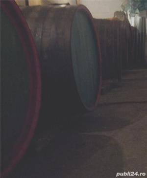 Imbogatestete rapid din afaceri cu vinuri,padure,agricultura si traieste sanatos la tara pan-la 150 - imagine 1