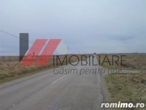 Teren intravilan 58300 mp Mosnita-Urseni - imagine 3