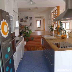 Inchiriere Vila zona Peris - Scrovistea - imagine 18