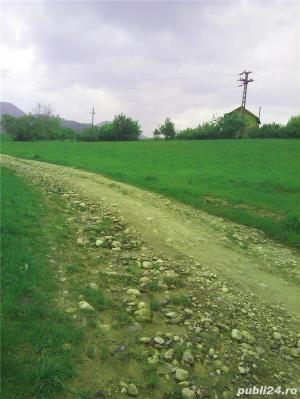 Teren la 17 Km de Sibiu - imagine 2