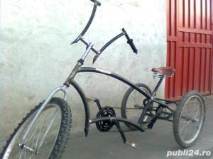 Tricicleta pt Adulti - Custom - imagine 4