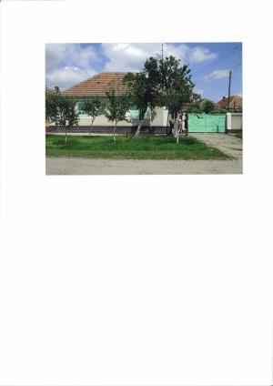 Vand casa la Fibis - imagine 1