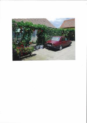 Vand casa la Fibis - imagine 4