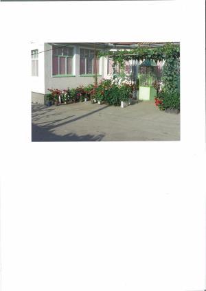 Vand casa la Fibis - imagine 3