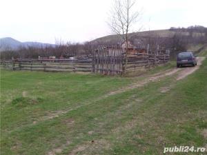 Teren de vanare Cugir-Alba - imagine 5