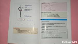 Bronhopneumopatia cronica obstructiva ghid practic , Ulmeanu , 2003 - imagine 5