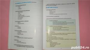 Bronhopneumopatia cronica obstructiva ghid practic , Ulmeanu , 2003 - imagine 4