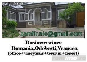 Imbogatestete rapid din afaceri cu vinuri,padure,agricultura si traieste sanatos la tara pan-la 150 - imagine 2