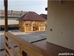 (105) Casa cu livada, Hintesti, Dealul Viilor, jud. Arges - imagine 8