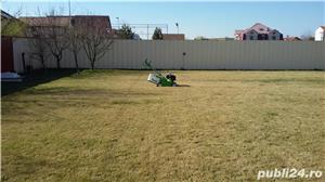 Tund gazon, iarba, gard viu - imagine 9