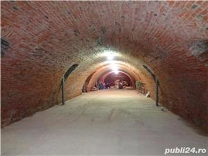 Inchiriez pivnita 300 mp in Biharia - imagine 1