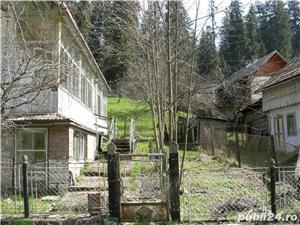 Casa Borsec - imagine 3
