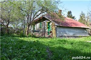 Vanzare teren si casa batraneasca Tancabesti, 19 ml deschidere Lacul Snagov - imagine 5