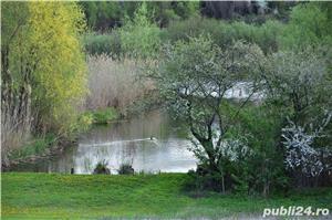 Vanzare teren si casa batraneasca Tancabesti, 19 ml deschidere Lacul Snagov - imagine 8