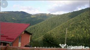 Inchiriem cabana la Maguri-Racatau,cu sauna si jacuzzi - imagine 8