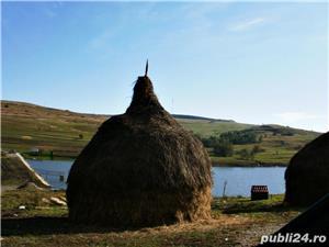Iazuri piscicole cu teren in Suceava- ideal pescuit sportiv, afaceri piscicultura, ferma etc - imagine 6