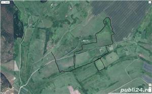 VAND CASA+TEREN AGRICOL IN  ZONA DE DEAL - imagine 2