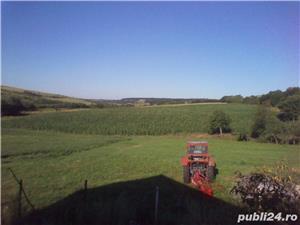 VAND CASA+TEREN AGRICOL IN  ZONA DE DEAL - imagine 6