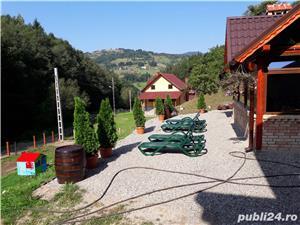 """Cabana """"Valea Alunisului """" Rachitele  - imagine 2"""