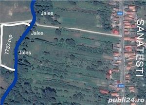 7733 mp in Runcu pe malul Jalesului - imagine 1