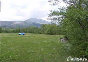7733 mp in Runcu pe malul Jalesului - imagine 2