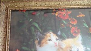Tablou vechi Poster - Peisaj cu Pisici 1974 - imagine 4