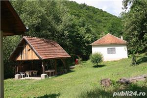 Vand casa la munte, jud Hunedoara - imagine 3