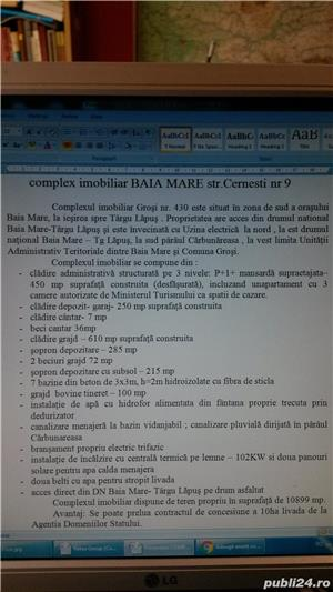 Vand propunere de afacere/proprietate situata in Baia Mare - imagine 2