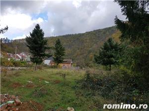 Intravilan 5755 mp str. Ciresului - imagine 4