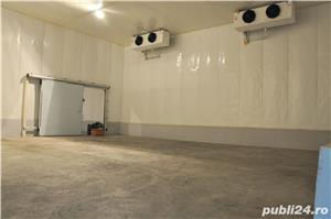 Inchiriem depozit frigorific pentru legume fructe si produse congelate - imagine 6