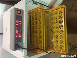incubator oua automat - imagine 7
