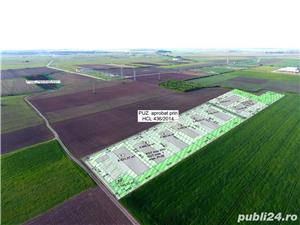 IEFTIN! 60.000 mp PUZ industrial aproape de Cola, CF Timisoara intravilan - imagine 6