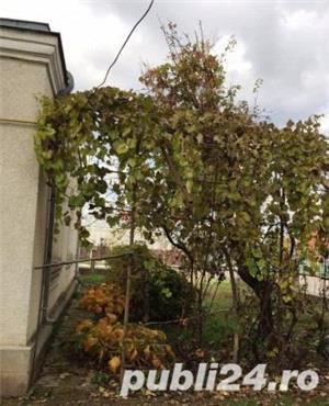 Casa in Centrul Orasului Marasesti / Vrancea, Centrala Gaze - imagine 7