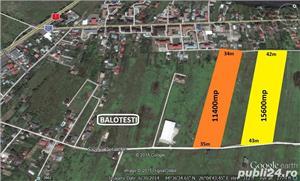 Vanzare teren  Balotesti apropiere DN1 Therme 15600 mp intravilan - imagine 3