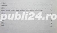 Contact cu arta, Petre Oprea, 1994 - imagine 4