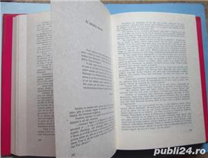 Coloana fara sfarsit, Marius Oniceanu, 1990 - imagine 4