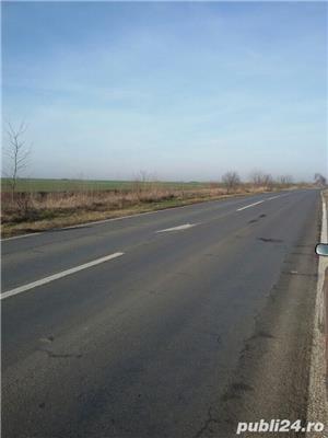 teren 5.3 ha C.Torontalului - imagine 5