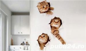 Fototapet 3D perete pisica ,VIVO HD0016 - imagine 2