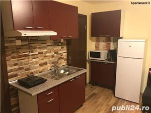 Apartamente cu 1 si 2 camere regim hotelier Timisoara central - imagine 7