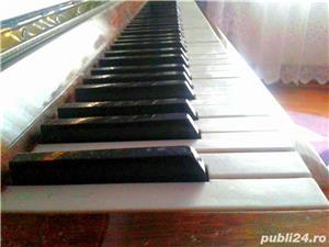 vand pianina ucraina - imagine 3