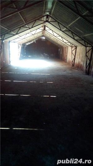 Inchiriere hale Comuna Ciorani - imagine 8
