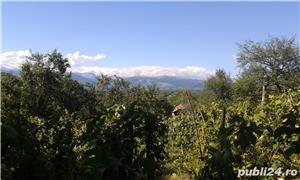 VAND CASA SI TEREN , 7500 mp , IN ZONA MONTANA TURISTICA - imagine 2
