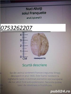 Nuc altoit Franquette 38lei - imagine 7