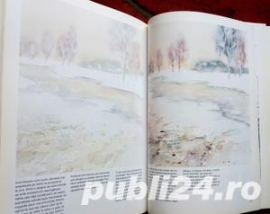Picturi in acuarela, Ursula Bagnall, 2000 - imagine 9