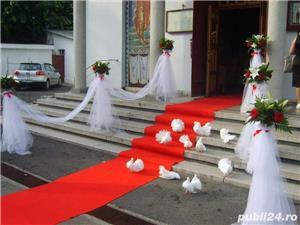Porumbei pentru nunti  botezuri evenimente speciale din viata dumneavoastra - imagine 3