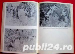 Pagini de arta moderna romaneasca, Radu Bogdan, 1974 - imagine 8