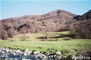 Vila la munte - imagine 9